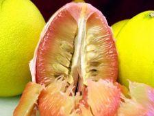 Cum sa alegi si sa cureti un pomelo