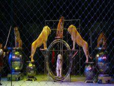 Sarbatori de iarna la Circul Globus