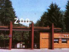 Ce vizitam azi: Gradina Zoologica