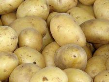 Cum sa folosesti cartofii in bucatarie