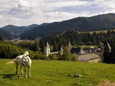 12 motive pentru a vizita Bucovina