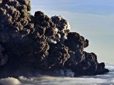 cenusa vulcanica