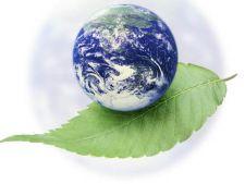 mediu