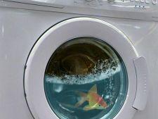 Detergent eco