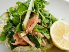 salata sprot
