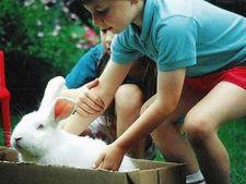 copii cu iepure