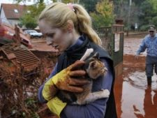 Dezastru ecologic in Ungaria