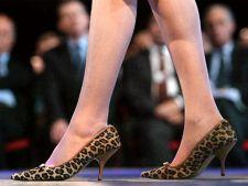 Pantofi toc pisicuta