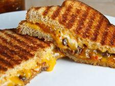 sandwich camembert