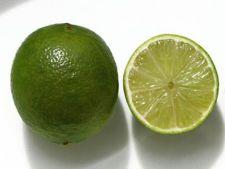 Lamaia verde sau Lime
