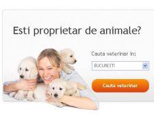cauta veterinar