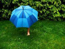 Sfaturi pentru irigarea plantelor