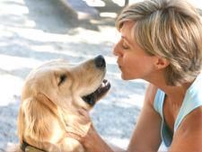 Respiratia urat mirositoare la caini - cum o tratezi