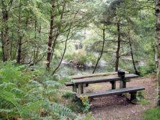 Zone de agrement unde te poti relaxa in aer liber
