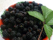 Top 10 fructe antiimbatranire