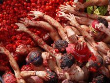 Festivalul dedicat rosiilor