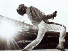 Ce nu stiai despre Freddie Mercury