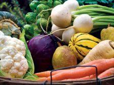 Ponturi pentru luna septembrie in gradina de legume
