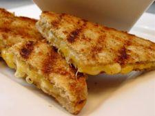 Sandwich cu trei feluri de branza, la gratar