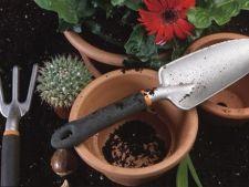 Cum sa-ti pregatesti uneltele de gradinarit pentru iarna