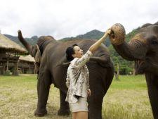 Andreea Raicu a mangaiat un tigru in Tailanda