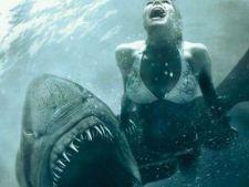 ADVERTORIAL Noaptea Rechiilor 3D, un horror de exceptie pentru amatorii de senzatii tari
