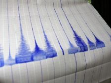 Cutremur de 4,8 grade in Vrancea