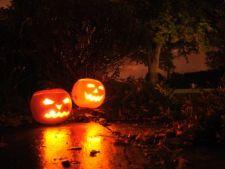 Pregateste-ti gradina pentru un Halloween eco!