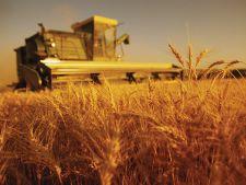 Romania are cele mai multe proprietati agricole din UE