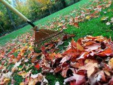 Pregateste-ti gradina si peluza pentru sezonul rece