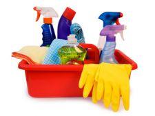 Limiteaza folosirea substantelor chimice toxice in casa ta