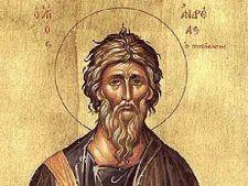 Capul Sfantului Andrei, adus in Romania