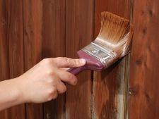 Cum sa-ti vopsesti singur gardul de lemn