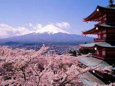 Luna Japoniei la Bucuresti