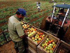 Agricultura, mai importanta decat salariile?