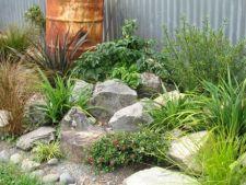 Cum amenajezi o gradina cu roci ornamentale
