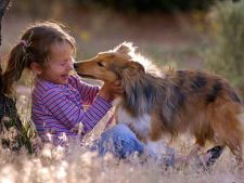 13 reguli esentiale de convietuire intre copii si caini