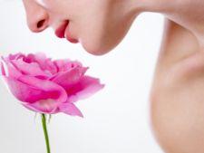 Terapia cu flori (Bach)