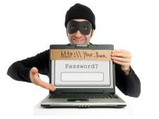 Mai putine tentative de frauda la plata online in 2011