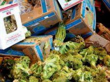 Parlamentul European vrea sa reduca risipa de alimente