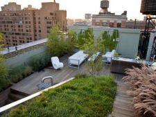 Idei istete pentru o gradina pe acoperis