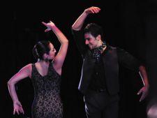 Flamenco cu Angel Munoz la Sala Palatului