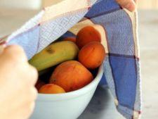 Cum elimini musculitele de otet din casa