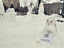 Protestele din Piata Universitatii continua