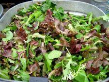 Salata rustica
