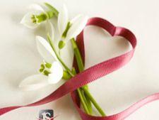 COMUNICAT Lidl si JustSmile lanseaza un concurs de felicitari pentru primavara