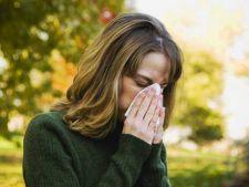 Ce trebuie sa stii despre alergiile de primavara
