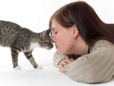 Pisicile prefera femeile, cu care dezvolta o relatie sociala speciala