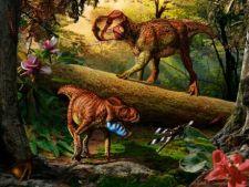 S-au descoperit doua specii noi de dinozauri cu coarne
