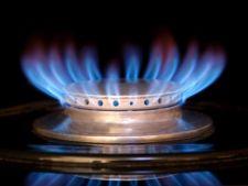 Pretul gazelor ramane neschimbat pana la 31 martie 2013